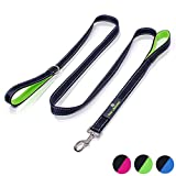 Paw Lifestyles Heavy Duty Dog Leash - 2 Handles - Padded Traffic Handle for Extra Control, 7ft Long - Perfect Leashes for Medium to Large Dogs (Black and Green)