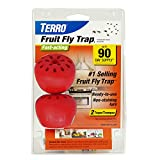 TERRO Fruit Fly Trap - 2 Pack T2502