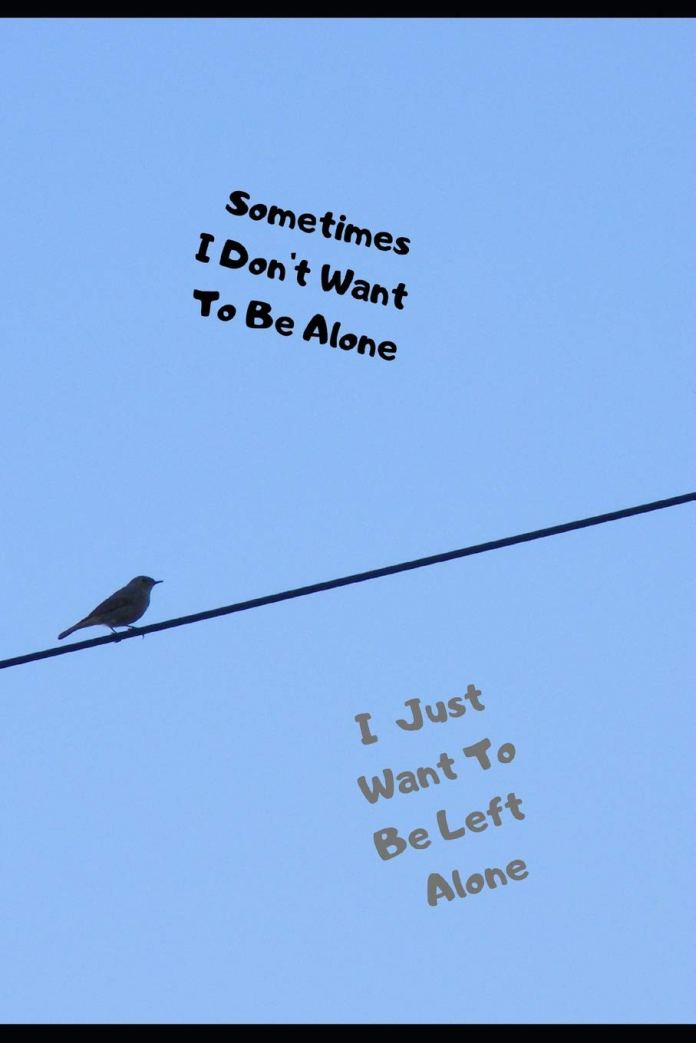 Sometimes I Don T Want To Be Alone I Just Want To Be Left Alone Inspirational Journal Notebook For Depression Anxiety Lined Journal Notepad For Confidence Grief Divorce Separation Bolton