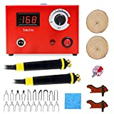 Wood Burning Machine Kit 20 Tips, Dual Pen 110V 50W Pyrography Machine, Digital Temperature Adjustment and Electric Wood Burning Detailer for Wood/Leather/Gourd, Red