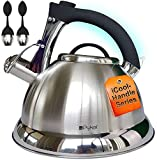 Pykal Whistling Tea Kettle with iCool - Handle, Surgical Stainless Steel Teapot for All Stovetops, 2 Free Infusers Included, 3 Quart
