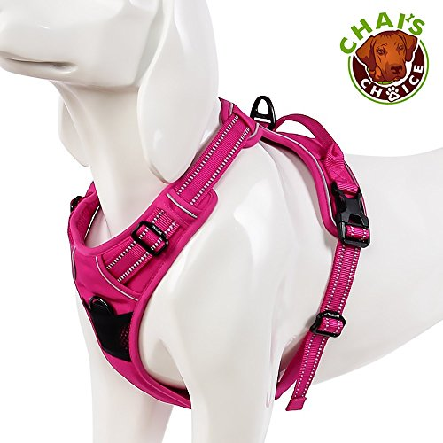 Chai's Choice Best Outdoor Adventure Dog Harness. 3M Reflective Vest with Two Leash Attachments. Caution - Please Measure Dog Before Ordering! Matching Leash and Collar Available 1