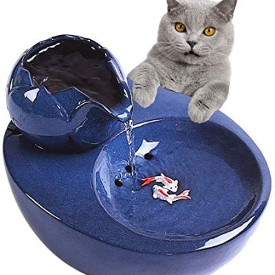 Best Cat Water Fountain for cats, 51bGDhS5 eL.jpg?resize=400%2C400&ssl=1