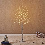 Hairui White Birch Tree with LED Lights 4FT 72L for Christmas Holiday Party Decorations Plug in Indoor Outdoor Use