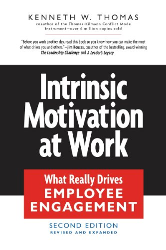 Intrinsic Motivation at Work: What Really Drives Employee Engagement (English Edition)