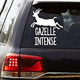 CELYCASY Gazelle Intense Vinyl Decal Proverbs 6:5 Dave Ramsey Inspired Decal Car Decal Debt Free Decal Debt Free Community