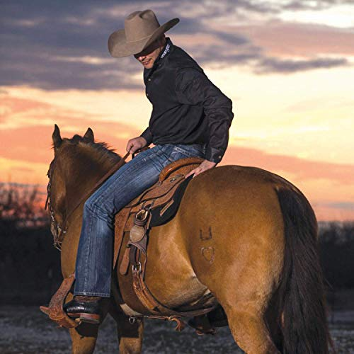 How To Prevent Sore Tailbone Horseback Riding