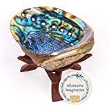 Alternative Imagination Hand Selected Premium Abalone Shell with Natural Wooden Cobra Stand