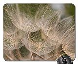 Mouse Pad - Oat Root Tragopogon Porrifolius Wild Flower Summer