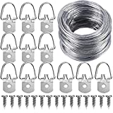 Paxcoo Picture Hanging Kit Including 50 Pcs D-Ring Picture Hangers with Screws and 100 Feet Picture Hanging Wire, Supports up to 30 lbs