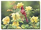 Cardinal & Yellow Roses Wrapped Canvas Art Print by Susan Bourdet