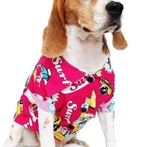 Dog Shirts Summer Camp, Dog Shirts, Dog Clothes, Small, Medium, Large, Colorful Pet Shirts, Shirt Pet Clothing, Puppy Clothes, Summer Dog Apparel, Hawaiian styles, Colorful Flowers Hawaiian shirt