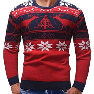 Alion Ugly Christmas Sweater Men's Christmas Elk Print Crew Neck Pullover Sweater
