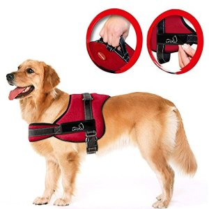 Lifepul No Pull Dog Vest Harness – Dog Body Padded Vest – Comfort Control for Large Dogs in Training Walking – No More Pulling, Tugging or Choking