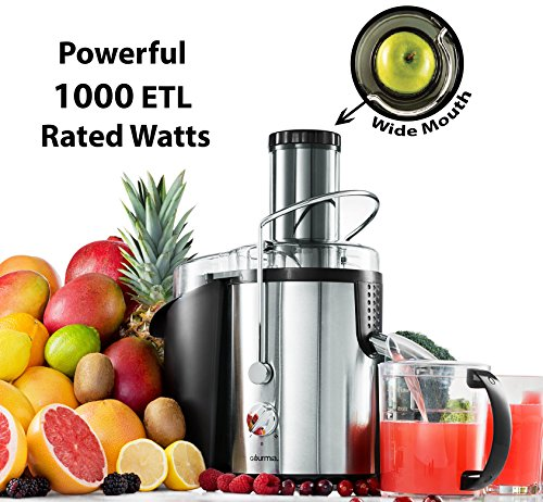 Gourmia GJ1250 Wide Mouth Fruit Centrifugal Juicer - Juice Extractor with Multiple Settings 32 oz - Stainless Steel… 1