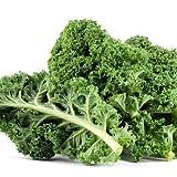 Dwarf Siberian Kale Seeds, 500+ Premium Heirloom Seeds, Popular Choice Kale! Sale!, (Isla's Garden Seeds), Non GMO, 100% Pure, 90% Germination Rates, Highest Quality Seeds