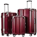 Coolife Luggage Aluminium Frame Suitcase 3 Piece Set with TSA Lock 100% PC (SILVER)