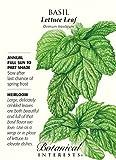 Lettuce Leaf Heirloom Basil Seeds - 2 Grams