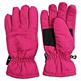 Urban Boundaries Womens/Girls Warm Winter Waterproof Thinsulate Snow Gloves (Pink, Medium)
