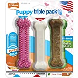Nylabone Puppy Chew Variety Toy & Treat Triple Pack, Chicken|Lamb|Apple, 3 Count, Regular