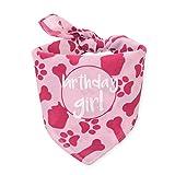 hecho Dog Birthday Bandana - Girl
