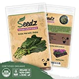 Organic Collard Greens Seeds (APPR. 125) Georgia Collard Greens - Heirloom Vegetable Seeds - Certified Organic, Non-GMO, Non Hybrid - USA