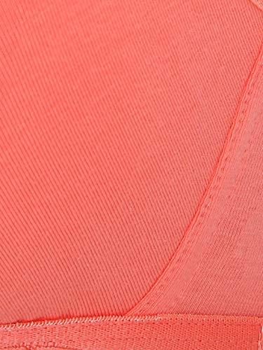 Jockey Women's Cotton Beginners Bra