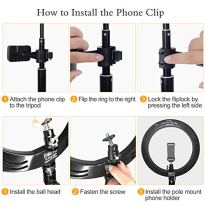 10-Selfie-Ring-Light-with-Adjustable-Tripod-Stand-3-Modes-10-Brightness-Levels-with-120-LED-Bulbs-5500K-LED-Ring-Light-with-Phone-Holder-for-Vlogs-Live-Stream-PhoneYouTubeSelf-Portrait-Shooting