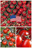 Sweet Million Cherry Tomato (Organic) Tomato 150 Seeds Upc 643451295290