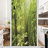 Decorative Window Film,No Glue Frosted Privacy Film,Stained Glass Door Film,Forest with Sunray Foliage Leaf Branches Woodland Eco Jungle Misty Picture,for Home & Office,23.6In. by 47.2In Lime Green Br
