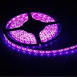 FAVOLCANO Pink 16.4 Feet 5M SMD 3528 300 LEDs Flexible Lighting IP65 Waterproof 60led/M Led Light Strip,LED Tape,60Leds/M,DC12V