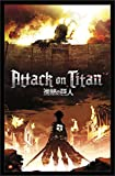 Trends International Attack on Titan Fire Wall Poster 22.375' x 34'