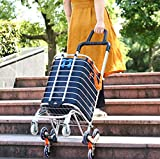 Folding Shopping Cart Portable Grocery Utility Lightweight Stair Climbing Cart with Rolling Swivel Wheels and Removable Waterproof Canvas Removable Bag