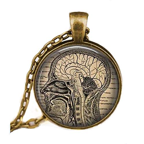 ON SALE Anatomical brain necklace,human brain anatomy pendant , neurologist gift necklace, biology , medical student gift,neurology pendant