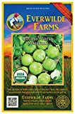 Everwilde Farms - 25 organic Green Tomatillo Tomatillo Seeds - Gold Vault Packet