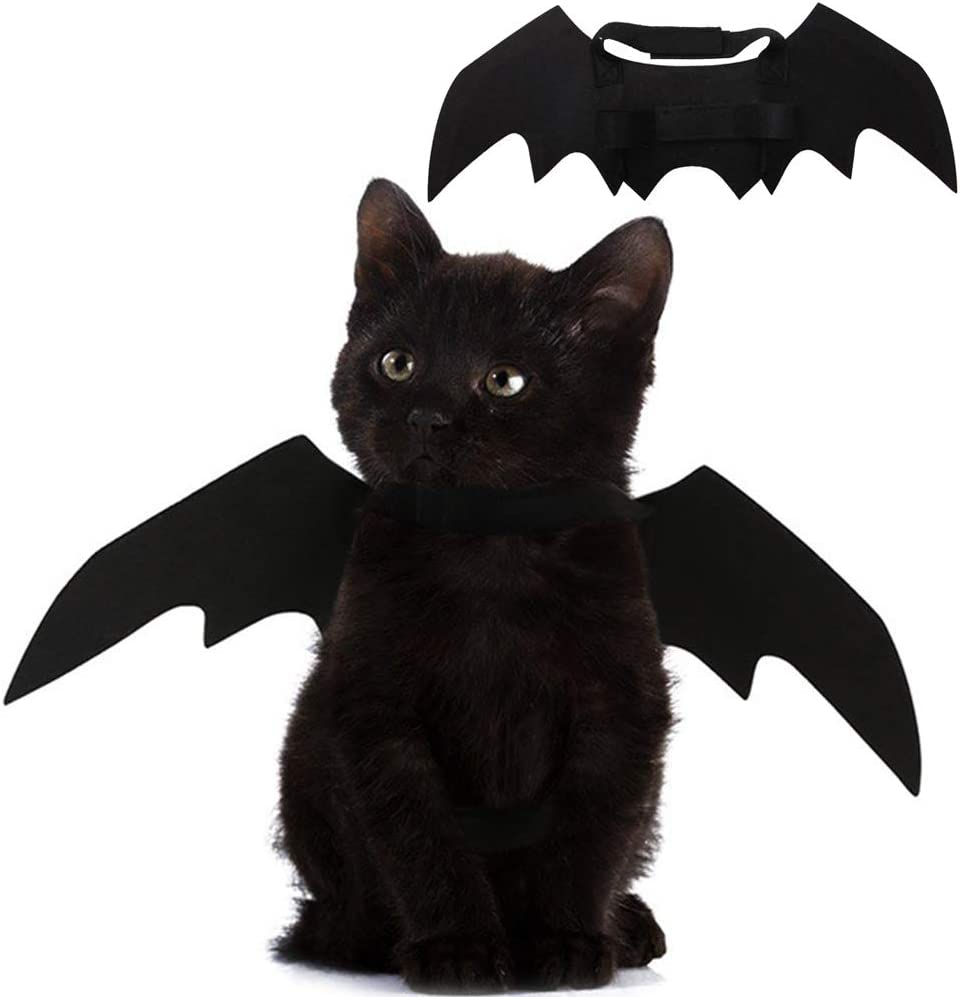 Amazon Com Pet Cat Bat Wings For Halloween Party Decoration Puppy Collar Leads Cosplay Bat Costume Cute Puppy Cat Dress Up Accessories Kitchen Dining