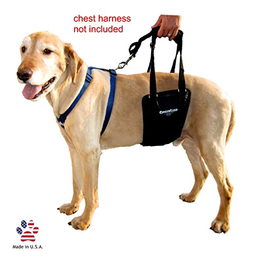 GingerLead Dog Support & Rehabilitation Harness Medium/Large Dog Sling with Stay on Straps; Helps Older, Disabled or Injured Dogs Walk. Fits Medium Male and Female Dogs and Large Male Dogs