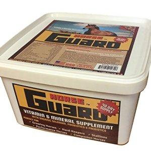 Horse Guard Equine Vitamin Mineral Supplement 17