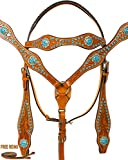 Product review for ELITE SERIES WESTERN LEATHER BLACK SHOW TURQUOISE CRYSTAL BLING HORSE TACK SET HEADSTALL BREASTPLATE