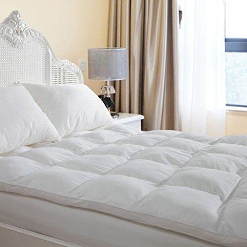 Duck & Goose Co Plush Durable Premium Hotel Quality Mattress Topper, Hypoallergenic Down Alternative Fiber with 10-Year Warranty, Queen Size, 2' H