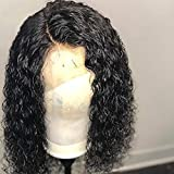 Short Curly Wig Human Hair Brazilian Lace Front Human Hair Wigs With Baby Hair Pre Plucked Bleached Knots (10inch)