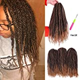 2 Tone Marley Braiding Hair Afro Mixed Colour Maley Hair Kinky Twist Crochet Synthetic Hair Extension for Black Women 3 Packs 18 Inchs(T1B/27#)