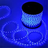 PYSICAL 110V 2-Wire Waterproof LED Rope Light Kit for Background Lighting,Decorative Lighting,Outdoor Decorative Lighting,Christmas Lighting,Trees,Bridges,Eaves (100ft/30M, Blue)