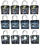DC Comics Batman Vs. Superman 12 Pcs Goodie Bags Party Favor Bags Gift Bags Birthday Bags
