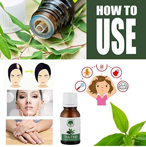 Tea Tree Oil 4