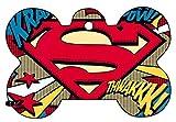 Superman Supergirl Superwoman Art Logo Dog Pet Cat ID Tag Bone Shape Image Photo Personalized with Key Ring (Comic Logo)