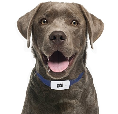 GIBI 2nd Gen Pet GPS Tracker (Locator) to Help Find and Keep Dog/Cat Safe