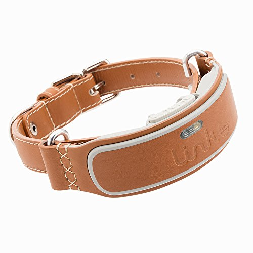 Link AKC Smart Dog Collar - GPS Location Tracker, Activity Monitor, and More, Leather Large (KITTN03)