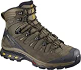 Salomon Men's Quest 4D 3 GTX Backpacking Boots, Wren/Bungee Cord/Green Sulphur, 13 D US