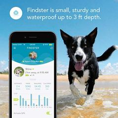 Findster-Duo-Pet-Tracker-Free-of-Monthly-Fees-GPS-Tracking-Collar-for-Dogs-and-Cats-Pet-Activity-Monitor